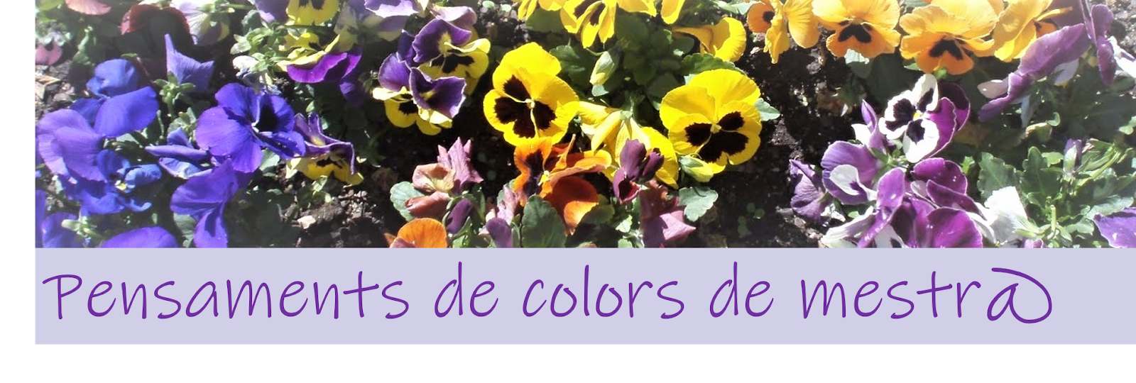 PENSAMENTS DE COLORS DE MESTR@