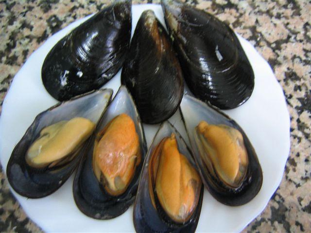 Artes de Pesca: VAMOS A PESCAR MEJILLONES