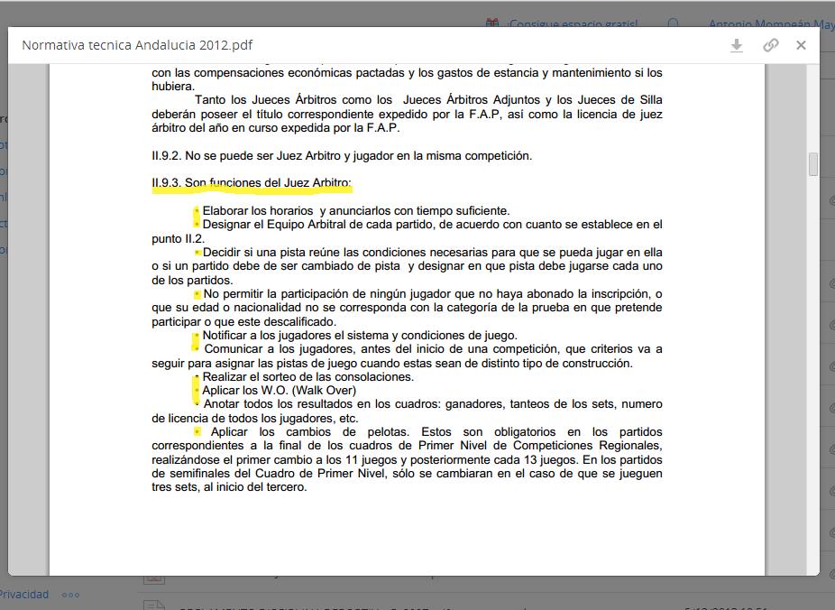 Extracto de la Normativa Técnica de Andalucía 2012, de la Federación Andaluza de Pádel, donde vienen reflejadas las funciones del Juez Árbitro