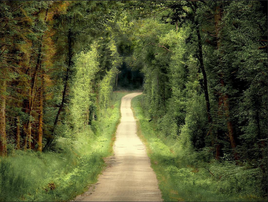 Plus imagen gratis caminos for Casa con un camino