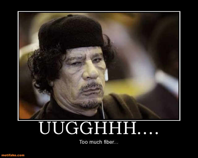 Muammar gaddafi demotivational posters