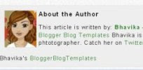 adding author information box to blogger posts