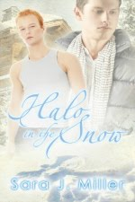 Young/New Adult Gay Romance