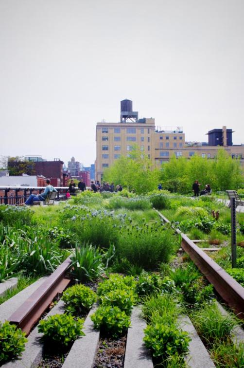 The Highline Park New York