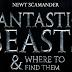 [FALSO] Procura por elenco para Animais Fantásticos e Onde Habitam teve início!