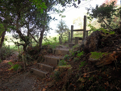 Cornish steps and stile
