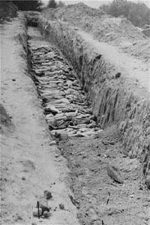 Noticias criminología. Carta de Amical Mauthausen a María Dolores de Cospedal. Marisol Collazos Soto