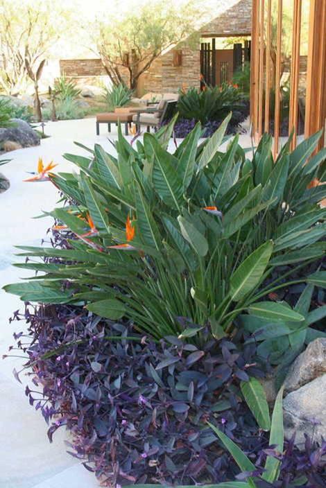 plantas bordaduras jardimPostado por Designer Karine Gimenez às 22