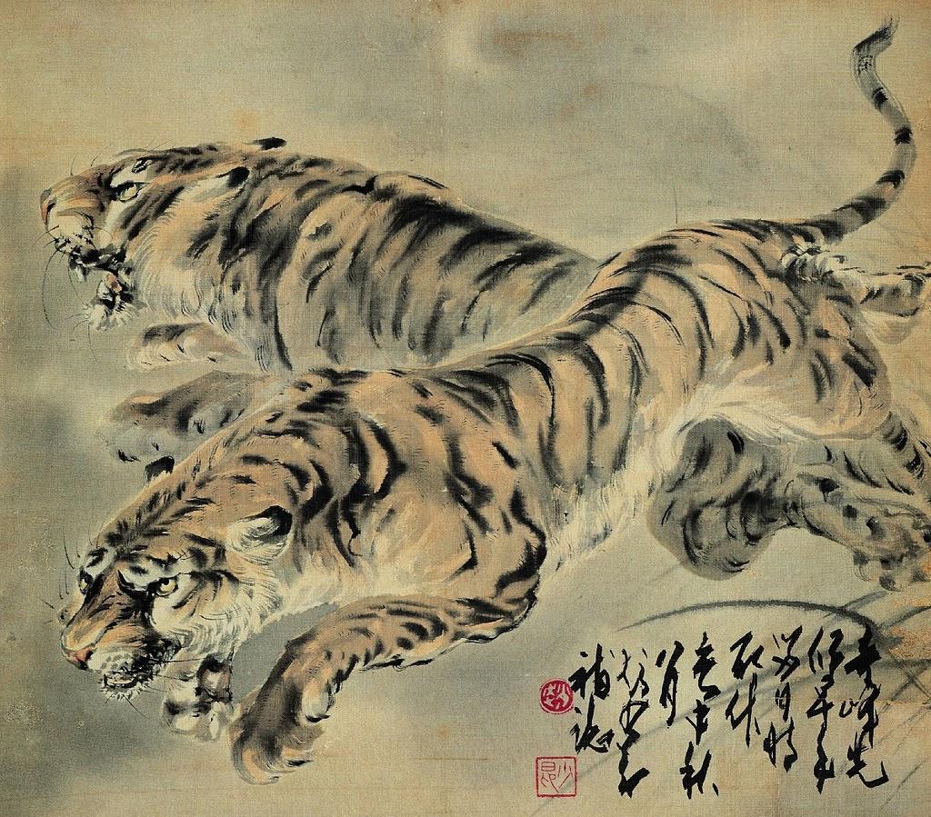 Tygrys 虎