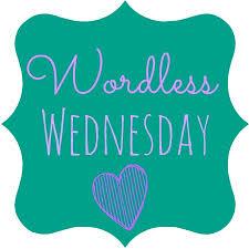 Wordless Wednesday LINKUP..