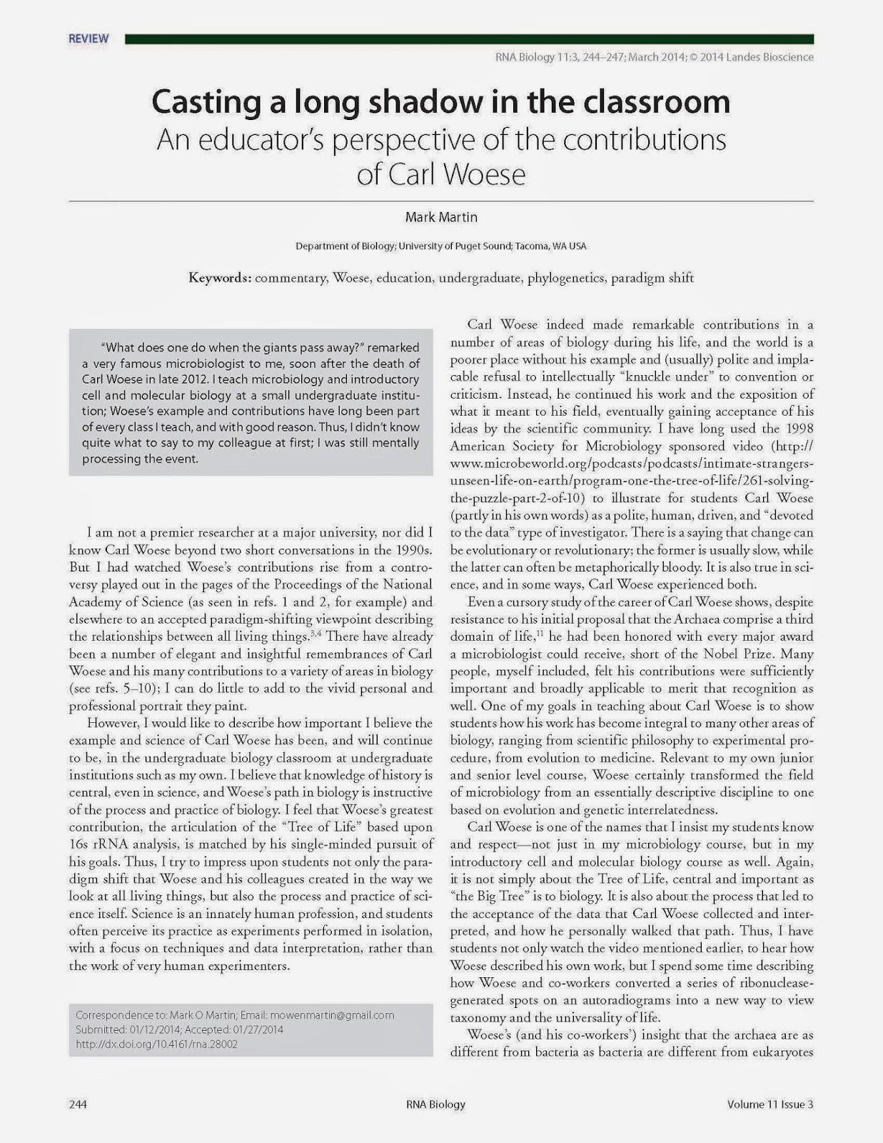 Australian essay help
