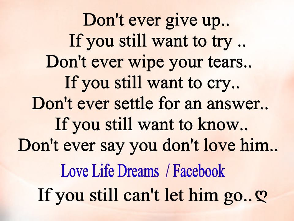 love life dreams don t ever give up