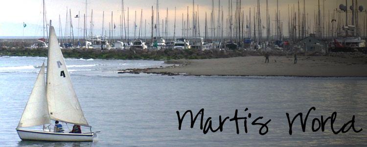 Marti's World