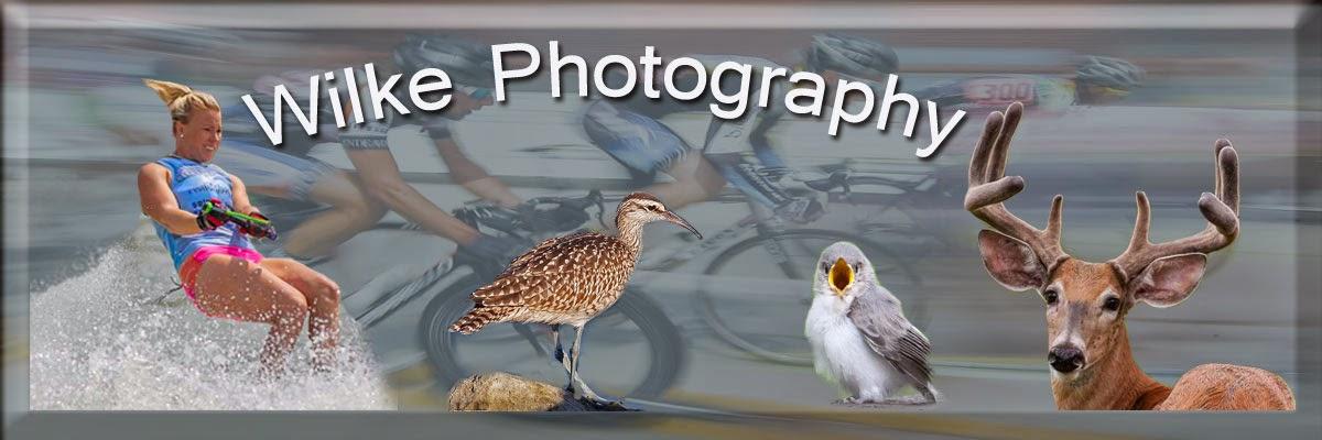 John Wilke Photography