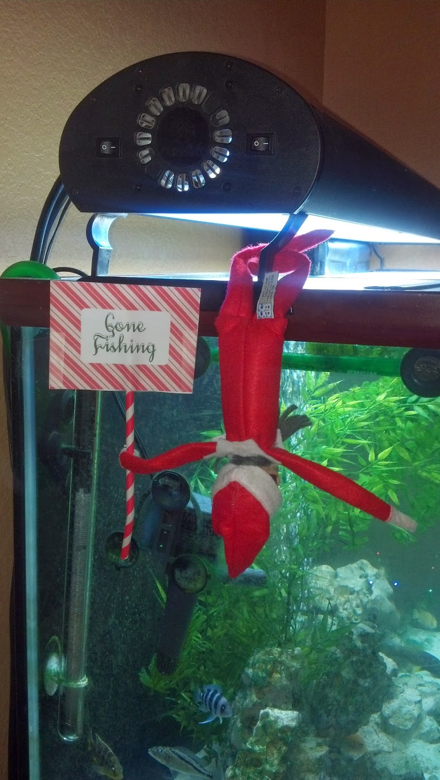 Learning as i sew bake cut and create elf on the for Elf on the shelf fishing