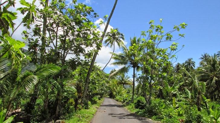 Paysage champêtre à Tautira - Tahiti