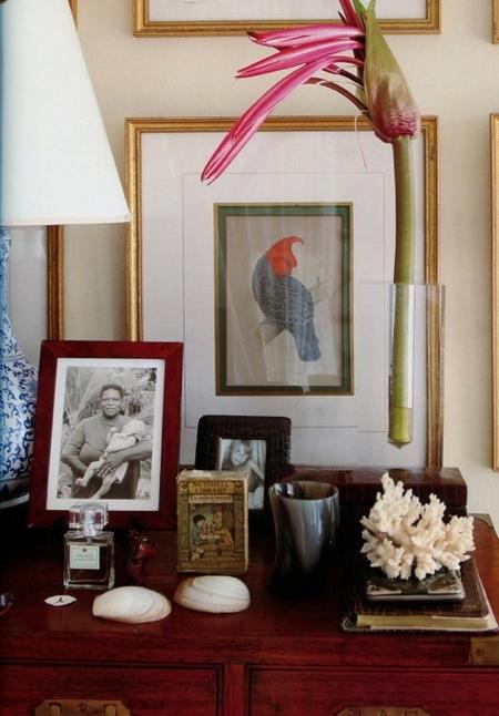 BEAUTIFULOSOPHY India Hicks HOME is Hibiscus Hills