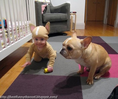 Very funny baby and dog.