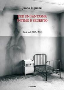 """Il mondo intimo e segreto"""" di Juana Bignozzi"""