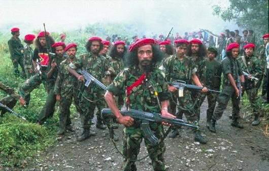 Pasukan Fretelin Timor Timur