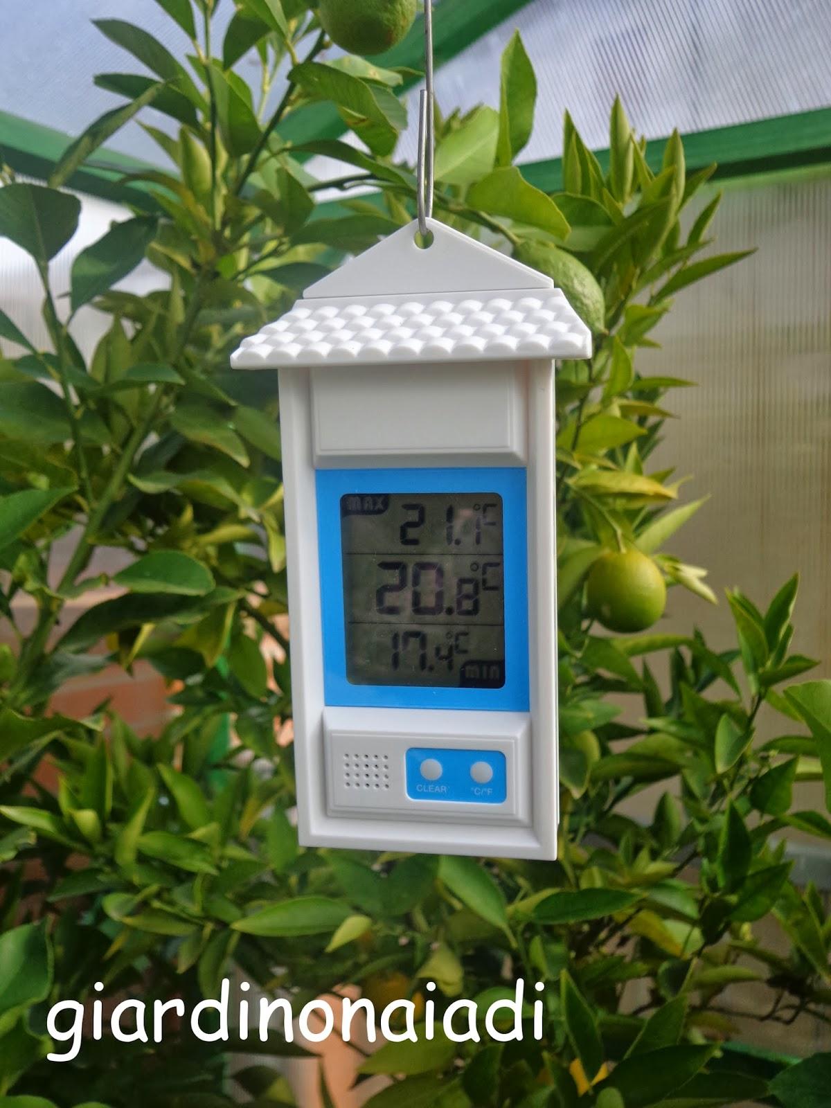 Il giardino delle naiadi uno specchio d 39 acqua al coperto - Abbellire ingresso esterno ...