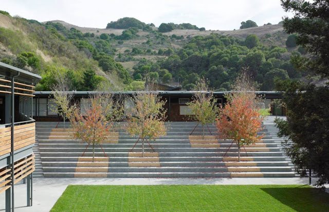 Marin country day school by ehdd architecture for School landscape design