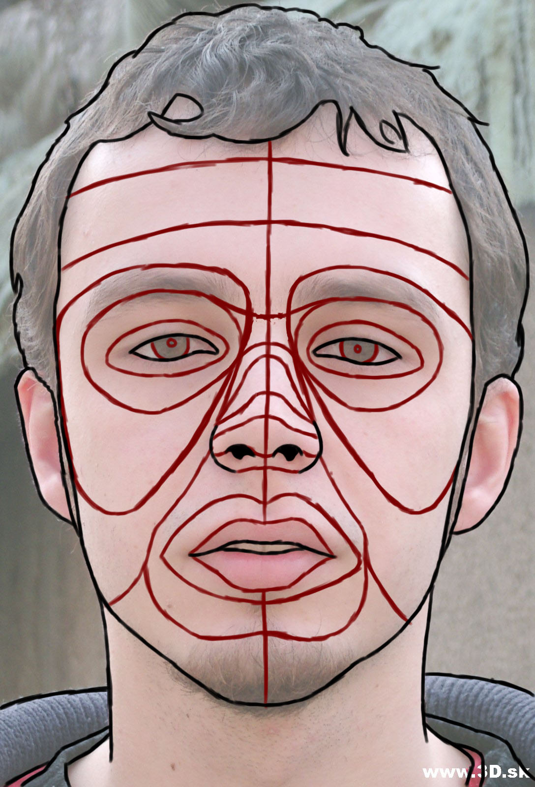 Male Face Reference For 3d 3d- using edge loops to model