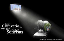 No apoyes la crueldad de los circos