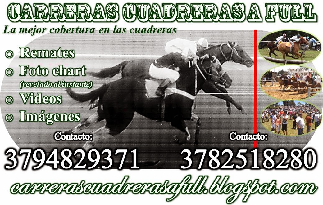 carreras cuadreras a full