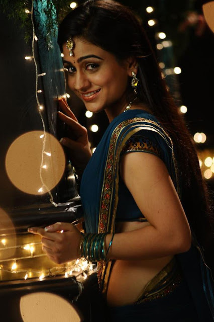 aksha in saree new hot photoshoot