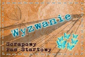 http://scrapowypasstartowy.blogspot.ie/2014/04/mapkowo-kwietniowo-majowo.html
