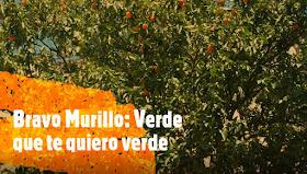 Bravo Murillo: Verde que te quiero verde