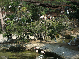 Birds_Enclosure_in_Vandaloor_Zoo.JPG