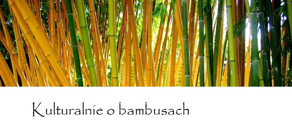 O bambusach ogrodniczo i kulturalnie