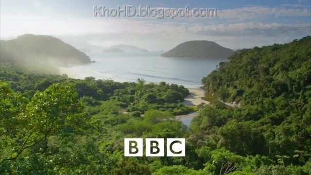 BBC Wild Brazil (2014)