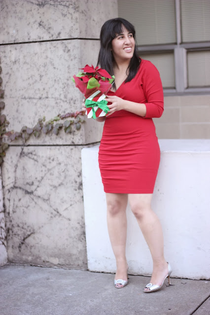 Poinsettia Red Holiday Dress