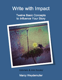 Twelve Basic Concepts to Influence Your Story