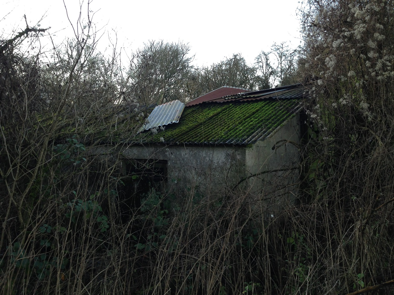 Rural decay, a derelict farm building, near Crux Easton
