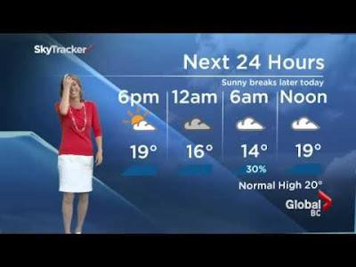 بالفيديو: عنكبوت يسقط فوق مذيعة خلال البث المباشر للنشرة الجوية - Weather camera spider scares Kristi