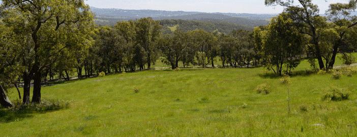 Farms For Sale Victoria