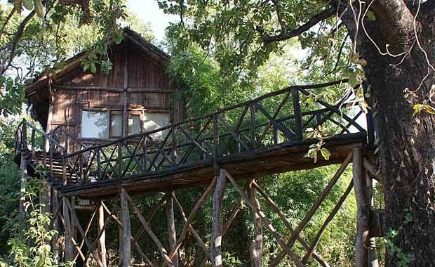 Tree House Hideaway Bandhavgarh