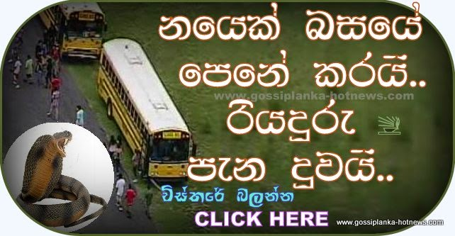 http://www.gossiplanka-hotnews.com/2014/08/cobra-at-driver-seat-mahamodara.html