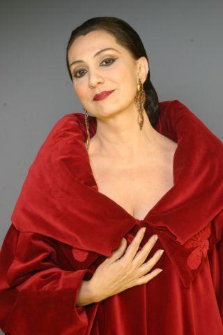 """Eliane Giardini Como Tarsila Amaral em """"Um Só Coração"""""""