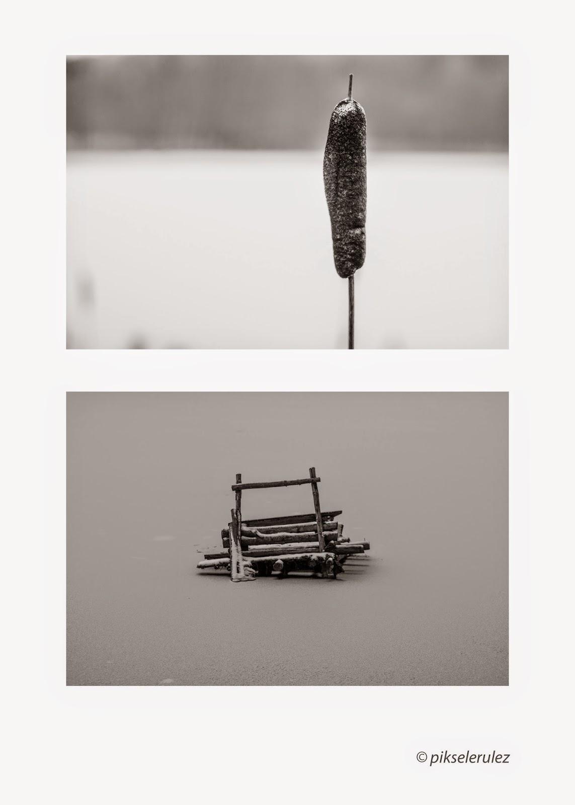 winter, zima, Agata Raszke, landscapes, white,