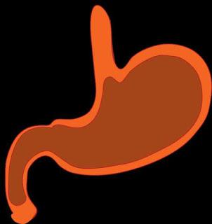 """Palestra gratuita sobre redução de estômago: """"Cirurgia da Obesidade"""""""