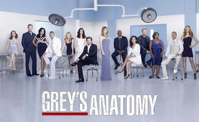 Assistir Online Grey's Anatomy 1ª,2ª,3ª,4ª,5ª e 6ª Temporada Dublado e Legendado