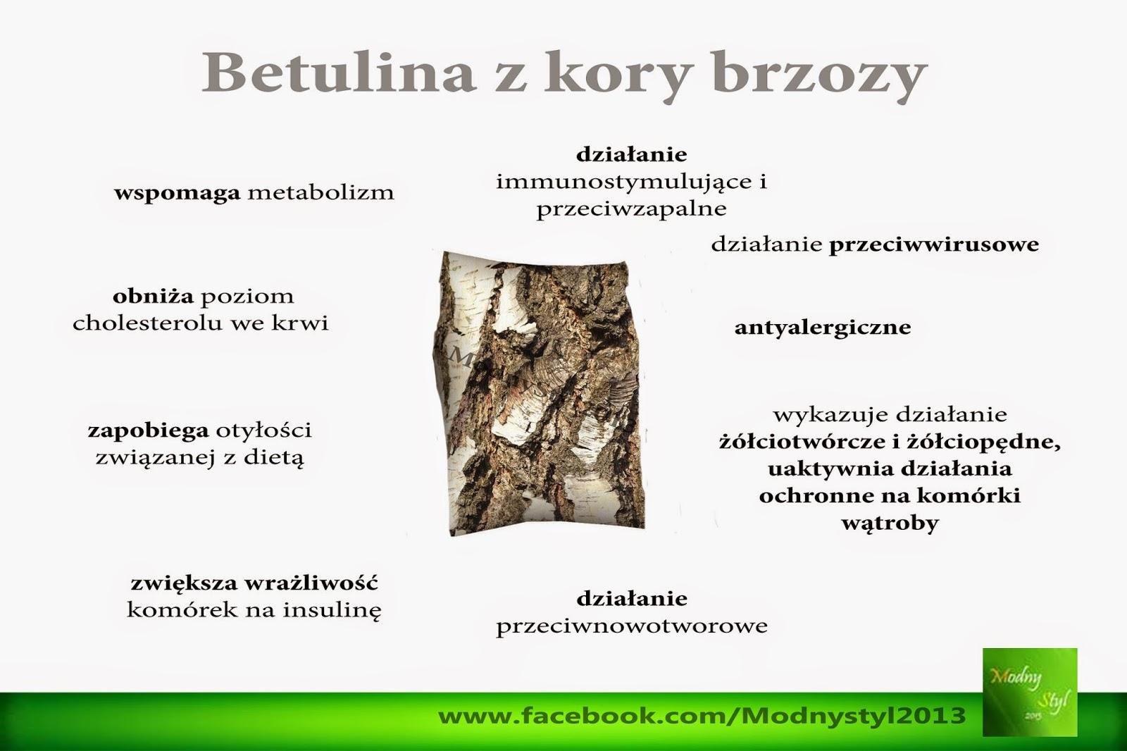 Betulina z kory brzozy