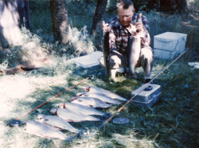 Man kneeling and holding 2 large trout with 7 more in a row on the grass in front of him, on the bank of a wooded Canadian lake in background.