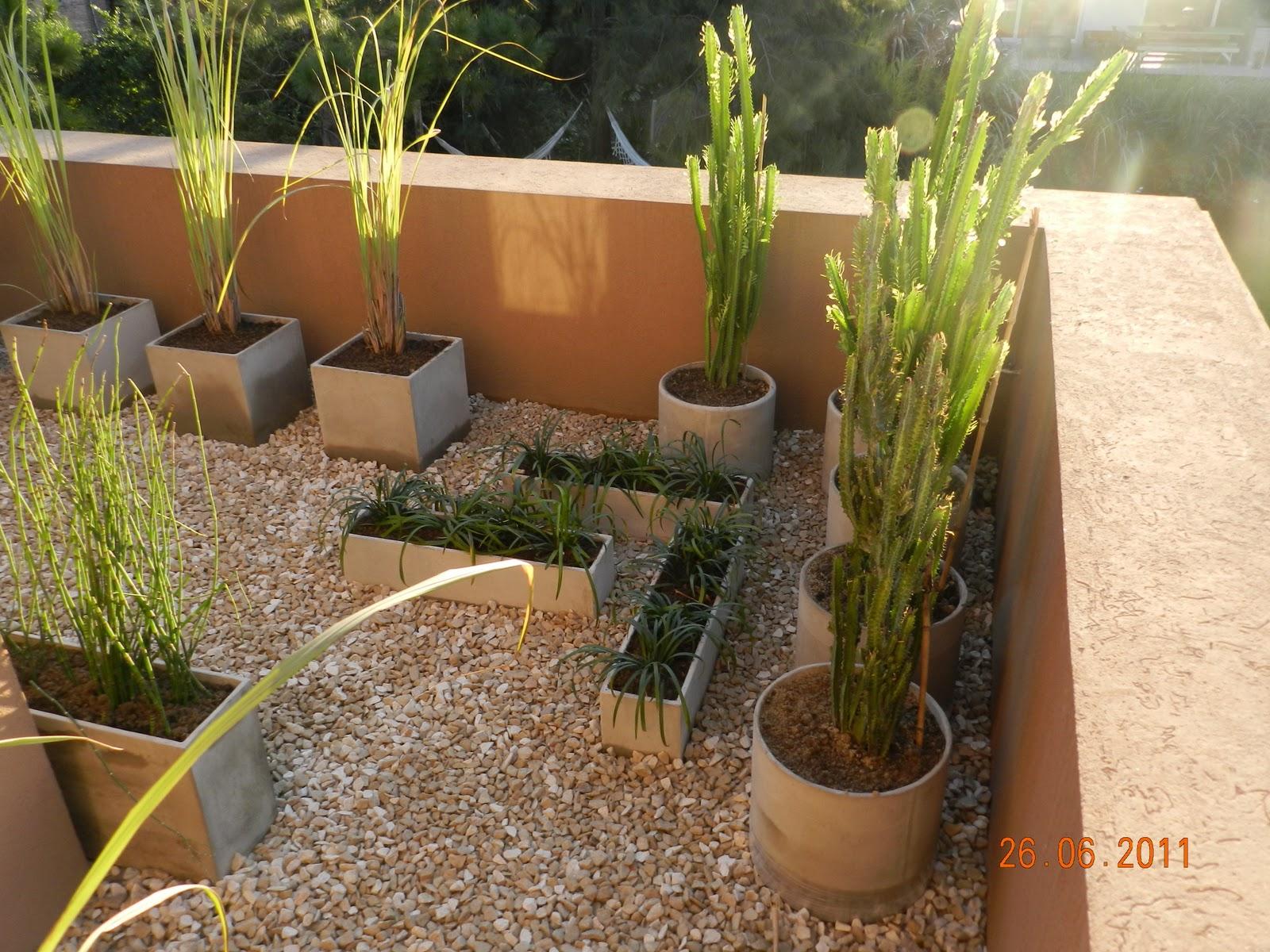 Fg paisajismo terrazas patios balcones for Paisajismo de terrazas