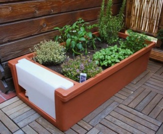 Eco way of life orto nel balcone di casa for Piantine orto on line